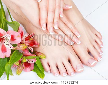 poster of Closeup photo of a female feet at spa salon on pedicure and manicure procedure - Soft focus image