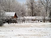 Rural Barnyard in the snow