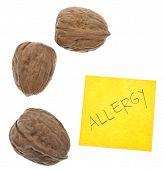 Walnut Allergy