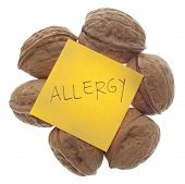 Nut Allergy Warning
