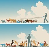 image of dog-walker  - Two colorful foreground silhouettes of a man walking many dogs - JPG
