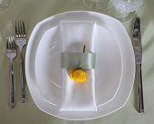 table dish
