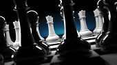 White Queen Chess Team Against Regular Black Chess