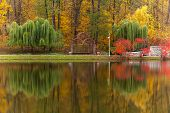 Постер, плакат: Park Autumn Nature Panorama Landscape Garden Colorful Tree