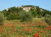 Rooftop village Moissac-Bellevue in Provence, France with a meadow with poppies