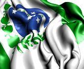 Flag Of Parana