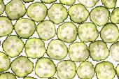 Lobule Cucumber
