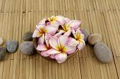 pic of stress relief  - frangipani flower in bowl with stones on bamboo mat - JPG