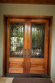 picture of front door  - An image of elegant detailed front doors - JPG