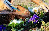 Gartenarbeit im freien