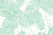 Tropical Leaves Pattern. Seamless Texture With Banana And Monstera Leaf. Hand Drawn Tropic Foliage.  poster
