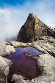 Clean Mountain Water On The Red .rock