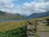 Gated Path In Scenic Ireland