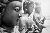 Statues Of Ancient Gods Buddha And Avalokitasvara