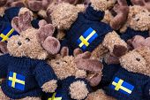 Moose Toys With Blue Sweater Background