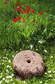 Historical Millstone In The Garden