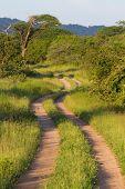 Scenic Africa Road