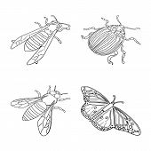Vector Design Of Fauna And Entomology Logo. Collection Of Fauna And Animal Stock Vector Illustration poster