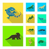 Isolated Object Of Tail And Fauna Sign. Set Of Tail And Environment Stock Symbol For Web. poster