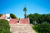 Many Stone Steps Lead Up. The Steps Are Built Of Red And Gray Stone. Palm Trees And Trees Grow Next  poster