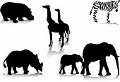 foto of african animals  - A set of silhouettes of african animals - JPG