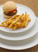 Mini Burger With French Fries