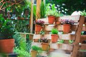 Diy Recycled Wooden Pallet For Flower Pots. Storage Industrial Pallet Used In Gardening For A Wall D poster