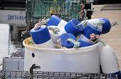 Blue Bouys