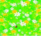 Ladybug and field flowers