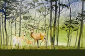 Paintings Forest- Watercolor Landscape Original Of Animal, Deer Family Concept And Eco Meadow Countr poster