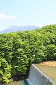 Fresh Green And Mt.iwate