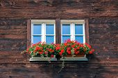Typical Window Of Wooden Alpine Chalet. Wooden Hut, Red Flowers In Window. Traditional Alpine Archit poster