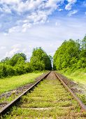 A Railway Through The Summer Green Fields. Beautiful Green Railway Tree Landscape Sky. Beautiful Lan poster