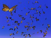 Monarch-Schmetterling Migration 3d render