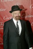 PALM SPRINGS, CA - JAN 5: Bryan Cranston arrives at the 2013 Palm Springs International Film Festiva