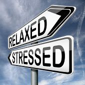relaxed or stressed stress test factor or response on yoga and relaxation avoiding tension and manag