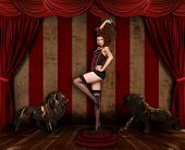 Circus Themed Pin Up Sexy GIrl