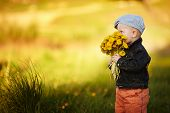 cute little boy with dandelions