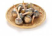 threeleaf seta, kuwai, vegetal japonês