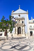 Igreja Da Misericordia Church And Wisteria Tree. Aveiro, Portugal