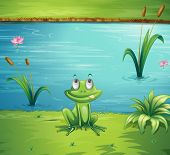 Illustration of a hungry frog at the side of the pond