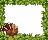 Illustration of a green frame border with a turkey on a white background