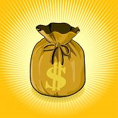 Dollar Gold Bag of Money Save for Success