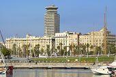 The promenade Passeig de Colom in Barcelona