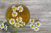 picture of chamomile  - Chamomile tea - JPG