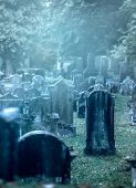 stock photo of graveyard  - Mystery misty 19th century graveyard with a group of tombstones - JPG