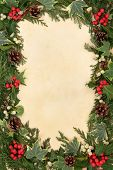Traditional christmas floral border of holly, ivy, mistletoe and pine cones over old parchment backg