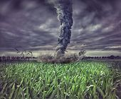stock photo of windy weather  - large tornado over the meadow  - JPG