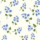 foto of forget me not  - Beautiful bright floral seamless pattern with forget - JPG