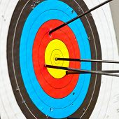 image of archery  - Archery target with arrow in the bullseye - JPG